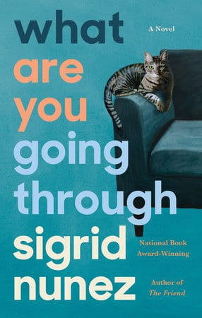What Are You Going Through by Sigrid Nunez.