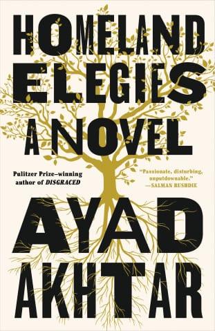Homeland Elegies by Ayad Akhtar.