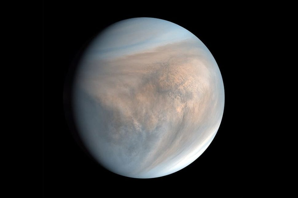 Life on Venus? Billionaires, Private Space Starups Will Launch Probes to Find Out