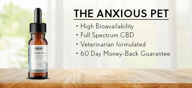 4_anxiouspet