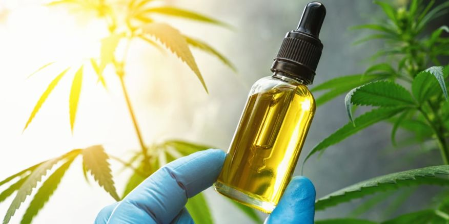 Top 3 Best Pure CBD Oil for Sale – Where to Buy CBD Products Online |  Observer