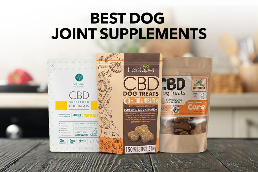 Best Dog Joint Supplement: Our Favorite Products