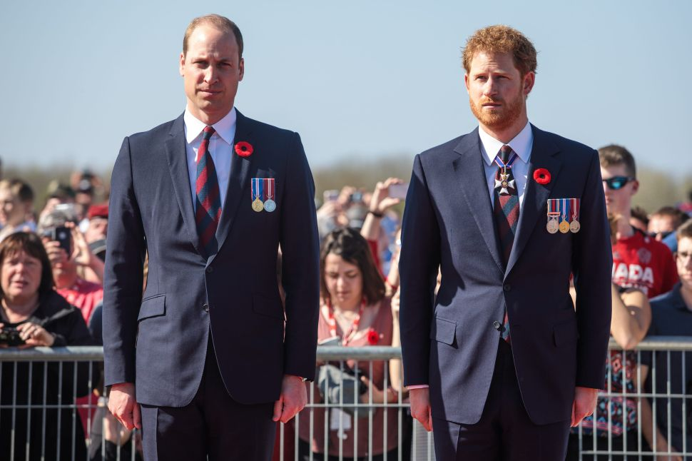 Prince William and Prince Harry Put Aside Their Differences for Princess Diana Statue