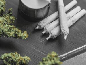 cbd joints pre rolls