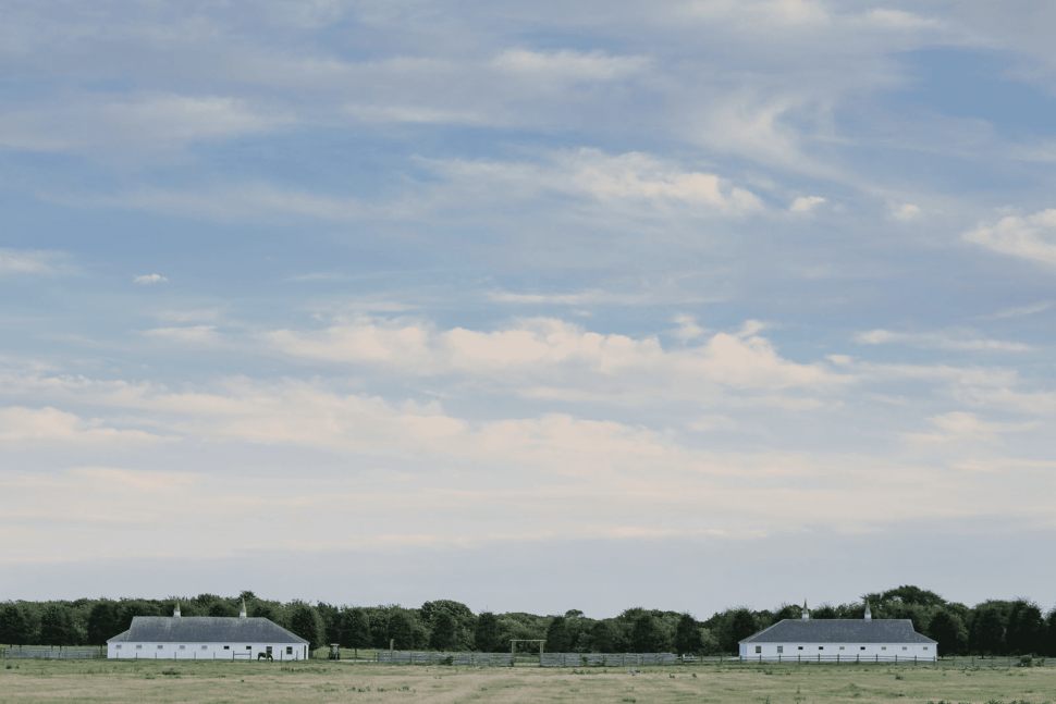 Max Levai's New Montauk Art Haven is Also Home to a Number of Horses