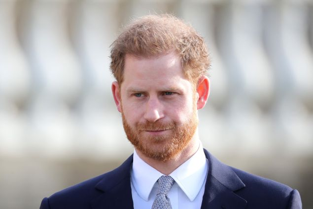Prince Harry Privately Told Royal Family About His Memoir: Details