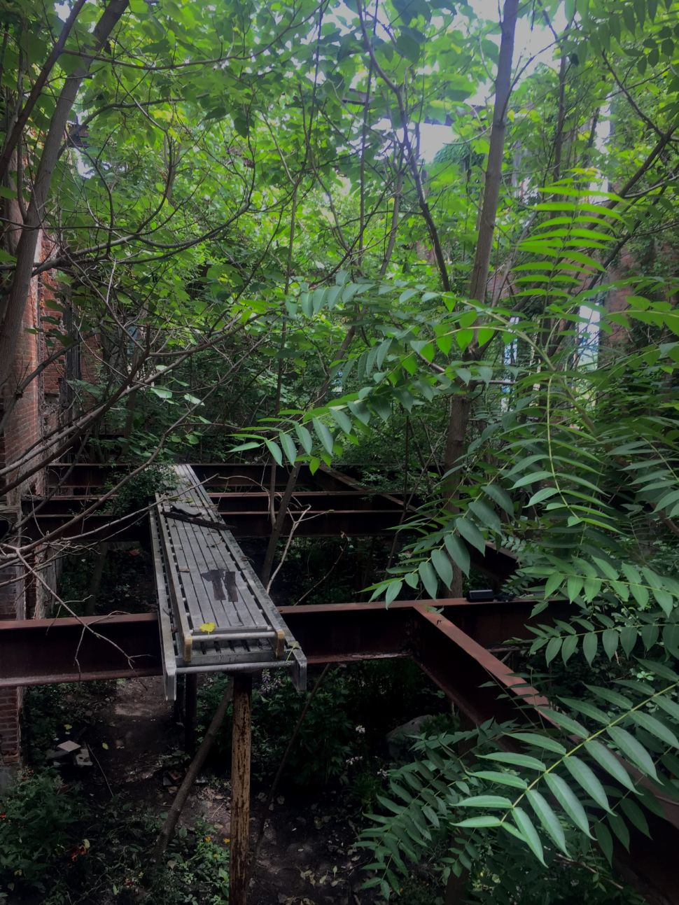 Visiting Martin Roth's Experimental Plant Concert Where Ruins Meet Nature
